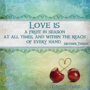 Love Is A Fruit - Mother Teresa Quote