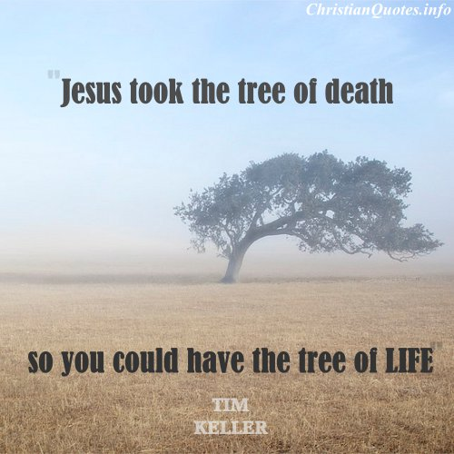 Christian Life Quotes Endearing 18 Amazing Christian Quotes From Tim Keller  Christianquotes