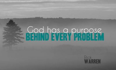 Rick Warren Quote - God has- a Purpose - fog in a field