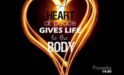 Proverbs 14:30 Bible Verse - A heart at peace gives life to the body, but envy rots the bones.