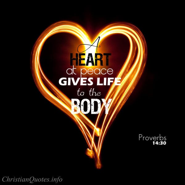 Merveilleux Proverbs 14:30 Bible Verse   A Heart At Peace Gives Life To The Body