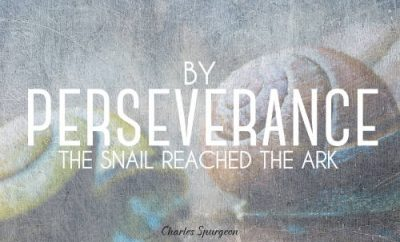 "Charles Spurgeon Quote - ""By perseverance the snail reached the ark."""