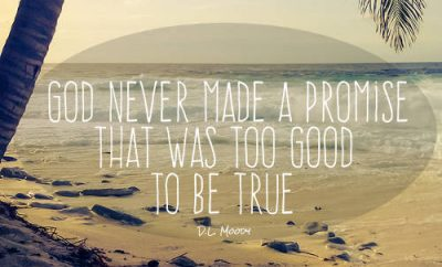 "D.L. Moody Quote - ""God never made a promise that was too good to be true."""