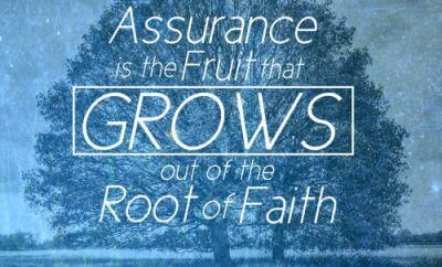 "Stephen Charnock Quote - ""Assurance is the fruit that grows out of the root of faith."""