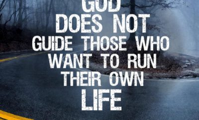 Winkie Pratney Quote - God Guides