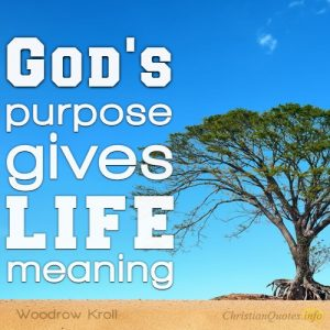 """God's purpose gives life meaning."""