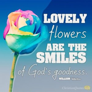 Lovely flowers are the smiles of God's goodness
