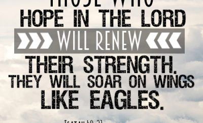 Those who hope in the LORD will renew their strength. They will soar on wings like eagles