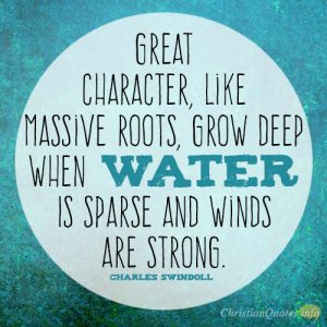 Great character, like massive roots, grow deep when water is sparse and winds are strong