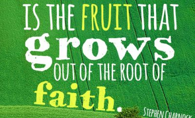 Assurance is the fruit that grows out of the root of faith