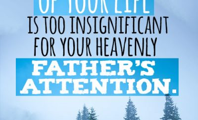 No detail of your life is too insignificant for your heavenly Father's attention