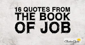 16 Quotes From The Book Of Job – Famous Bible Scriptures