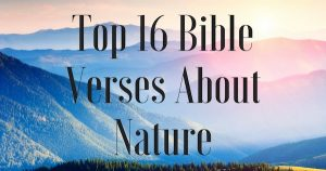 Top 16 Bible Verses About Nature