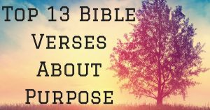Top 13 Bible Verses About Purpose