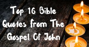 Top 16 Bible Quotes From The Gospel Of John