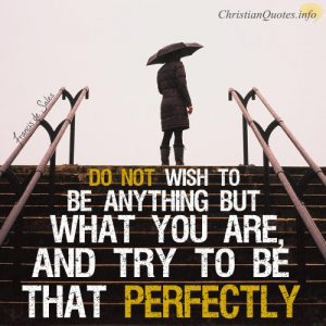 "Francis de Sales quote - ""Do not wish to be anything but what you are, and try to be that perfectly."""