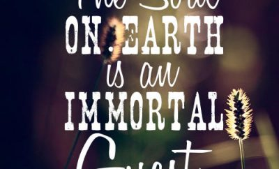 """Hannah More Quote - """"The soul on earth is an immortal guest."""""""
